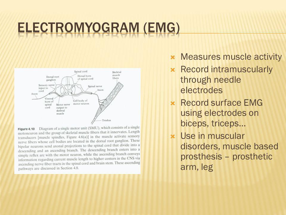 Electromyogram (EMG) Measures muscle activity