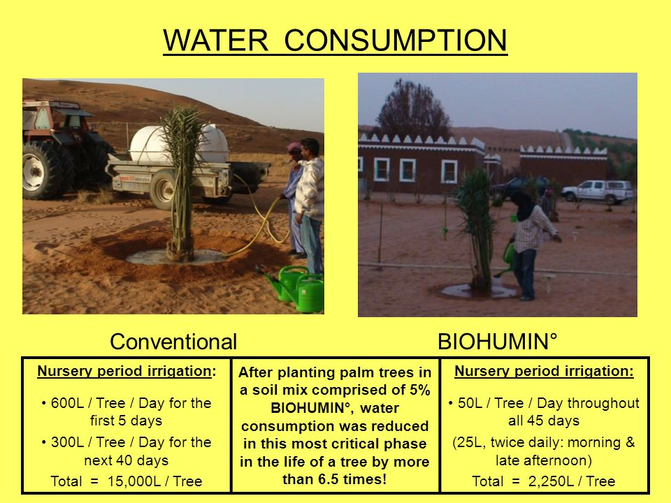 WATER CONSUMPTION Conventional BIOHUMIN° Nursery period irrigation: