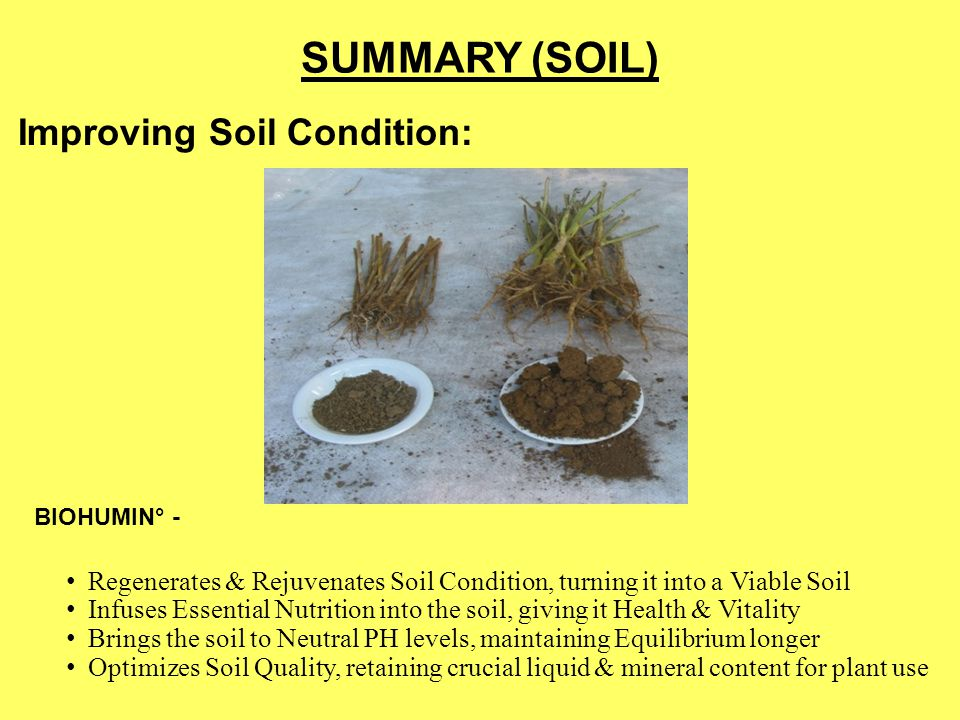 SUMMARY (SOIL) Improving Soil Condition: