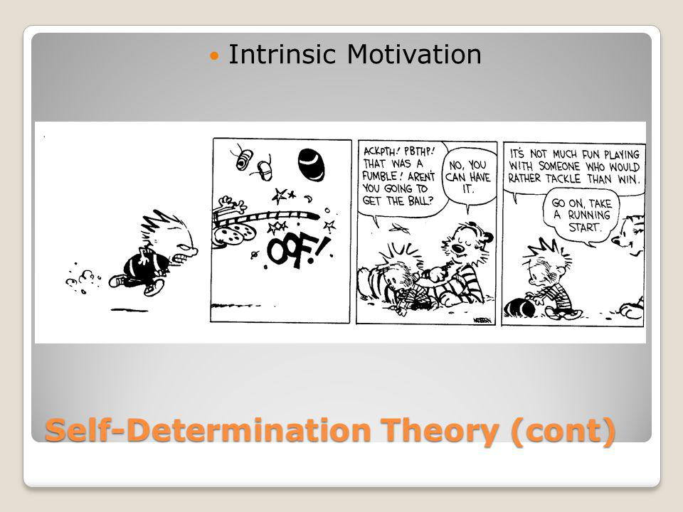 Self-Determination Theory (cont)