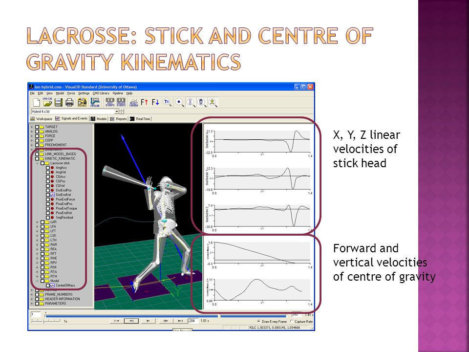 Lacrosse: stick and centre of gravity kinematics
