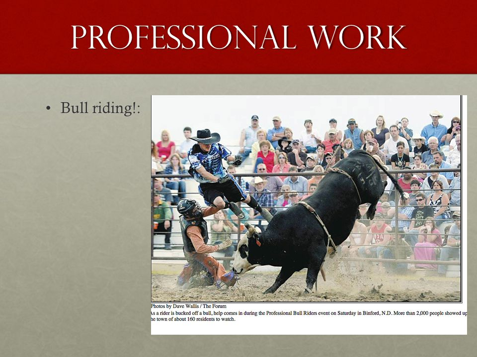 Professional work Bull riding!: