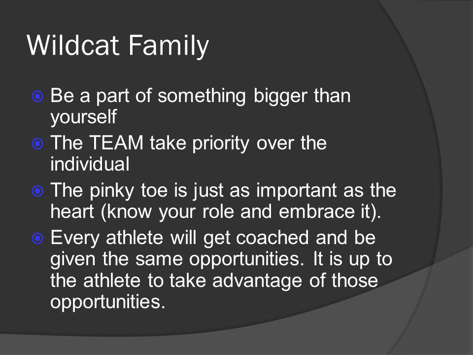 Wildcat Family Be a part of something bigger than yourself