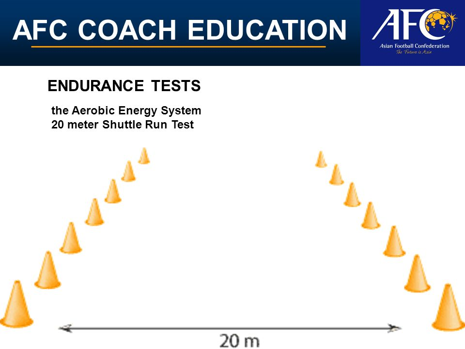 ENDURANCE TESTS the Aerobic Energy System 20 meter Shuttle Run Test
