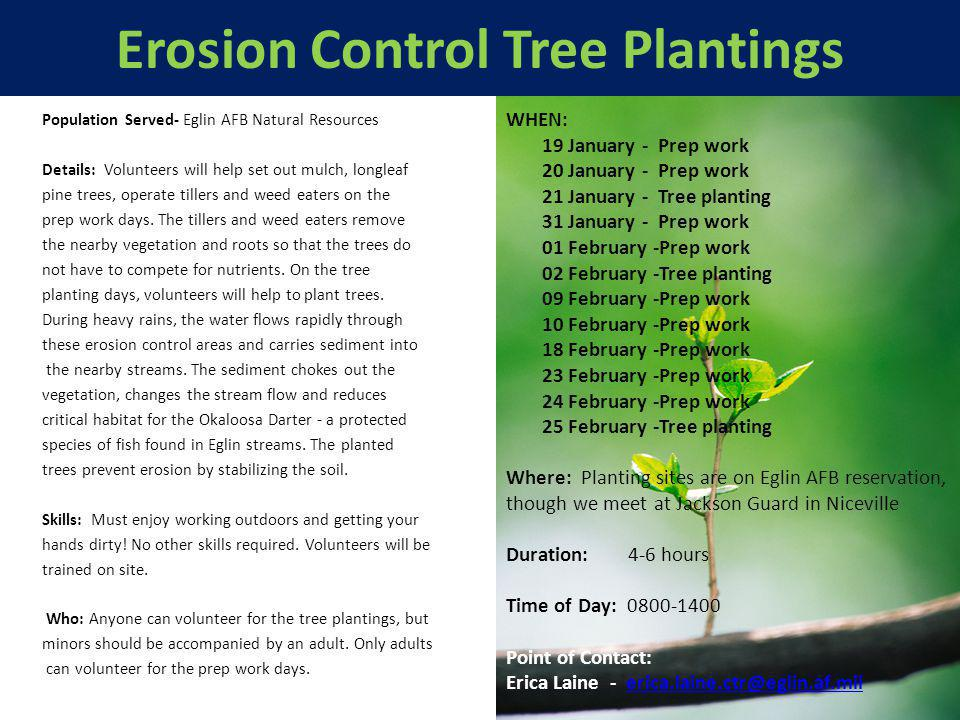 Erosion Control Tree Plantings