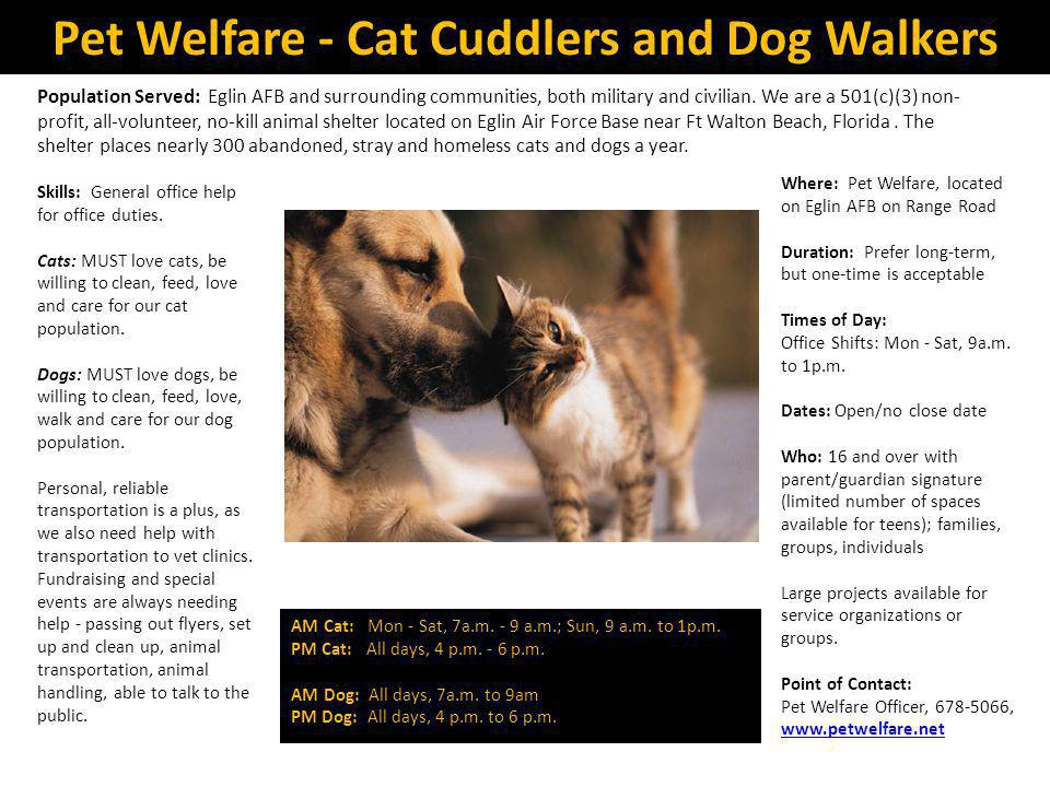 Pet Welfare - Cat Cuddlers and Dog Walkers