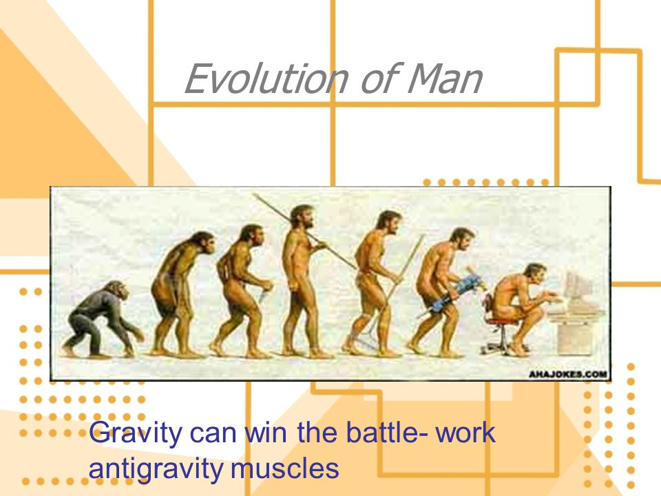 Evolution of Man Gravity can win the battle- work antigravity muscles