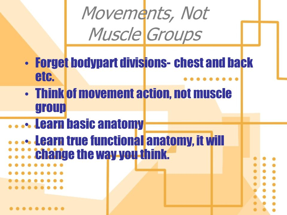 Movements, Not Muscle Groups