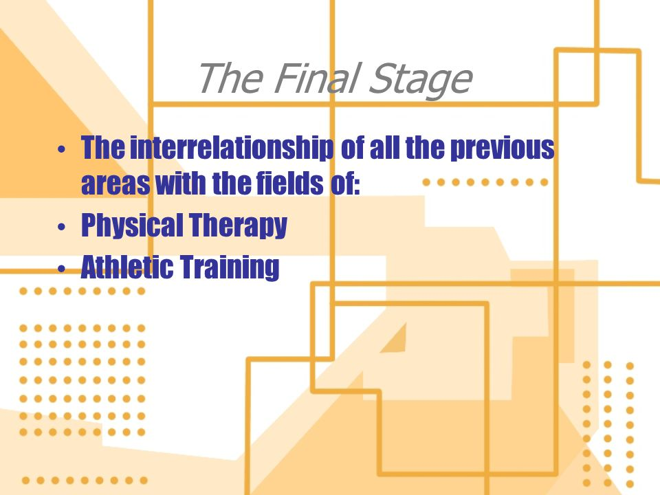 The Final Stage The interrelationship of all the previous areas with the fields of: Physical Therapy.