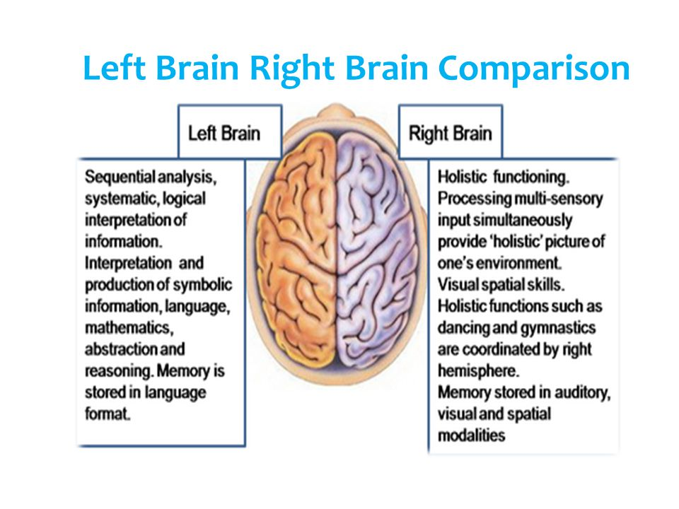 Left Brain Right Brain Comparison