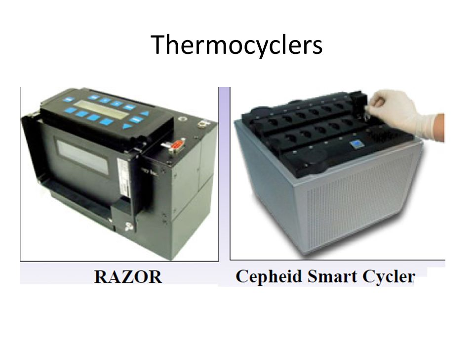 Thermocyclers