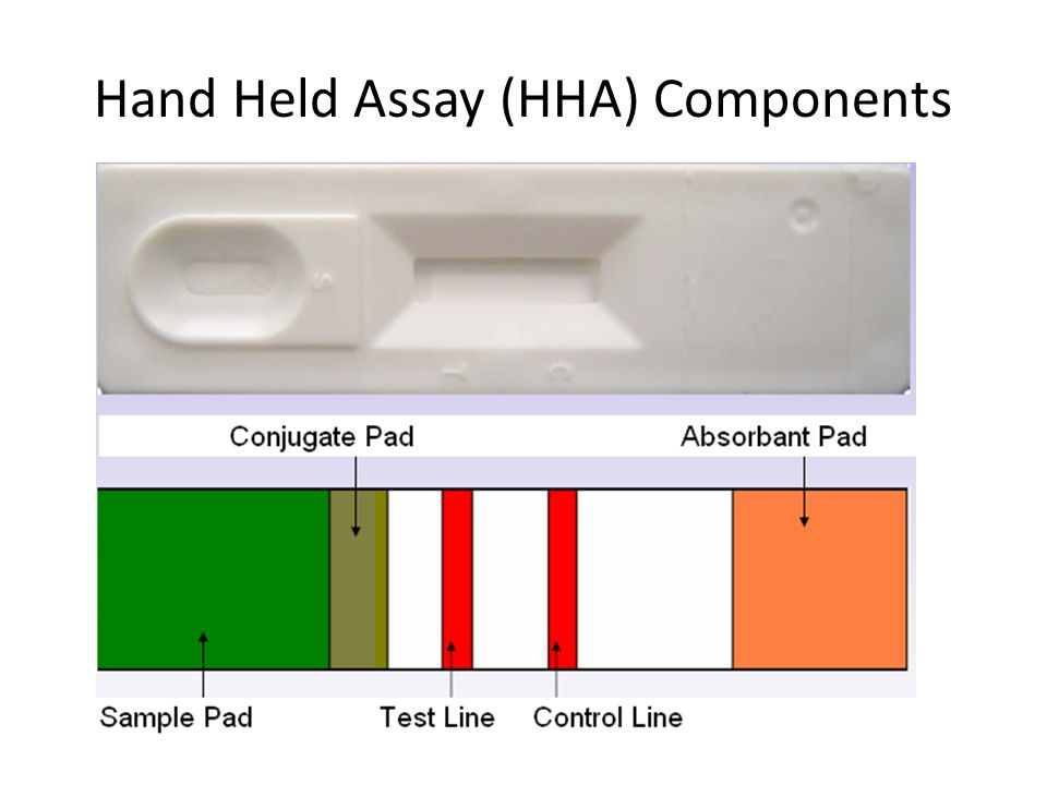 Hand Held Assay (HHA) Components