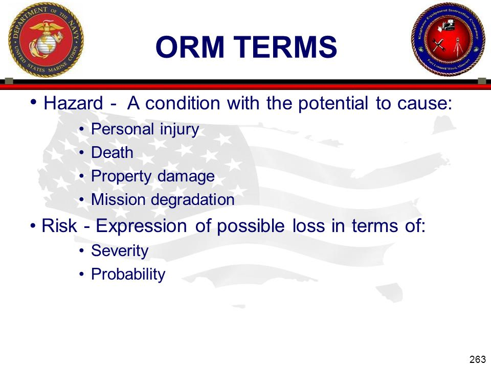 ORM Terms Hazard - A condition with the potential to cause: