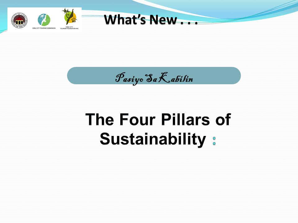 The Four Pillars of Sustainability :
