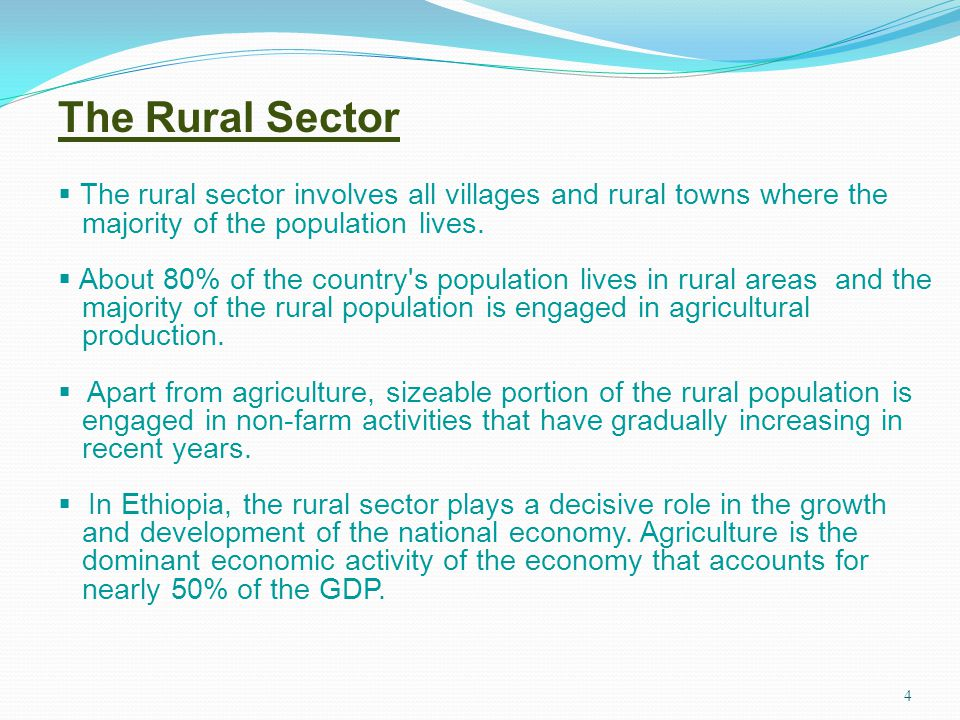 The Rural Sector The rural sector involves all villages and rural towns where the. majority of the population lives.
