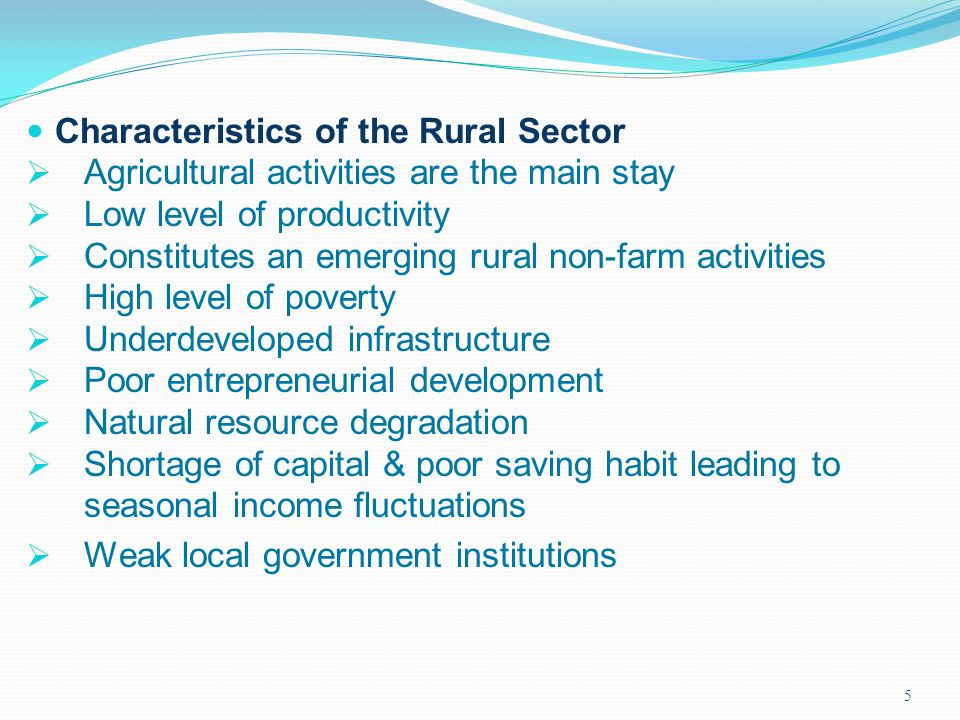 Characteristics of the Rural Sector
