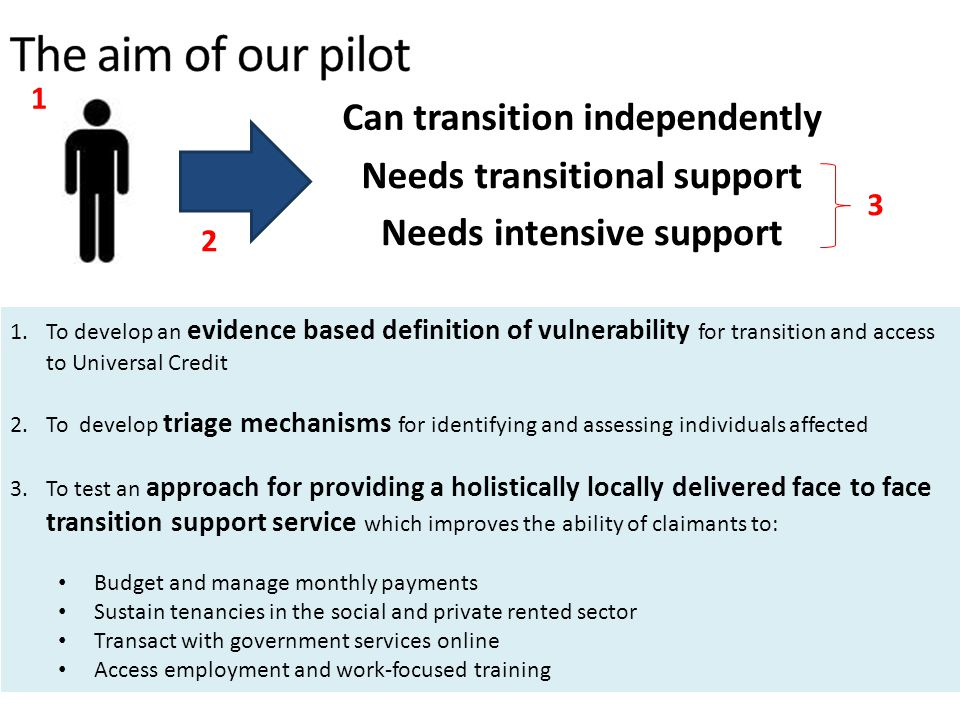 The aim of our pilot Can transition independently