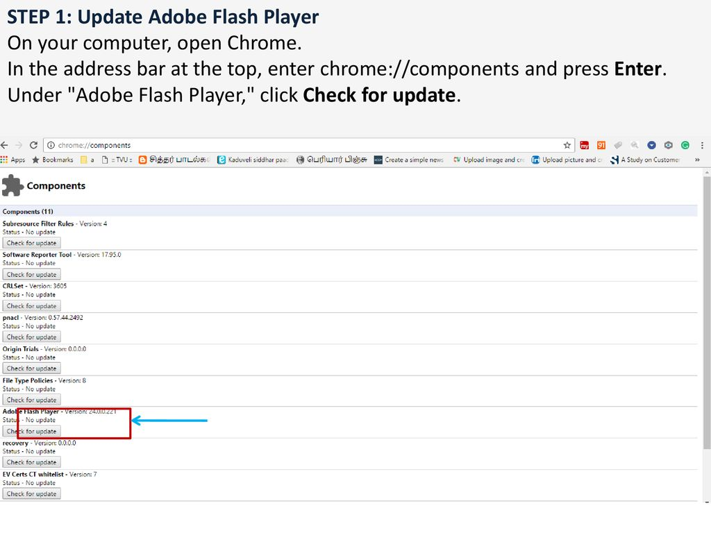 chrome components update adobe flash player