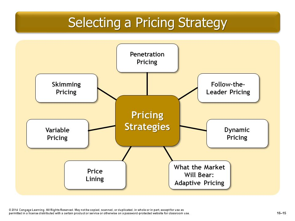 Selecting a Pricing Strategy