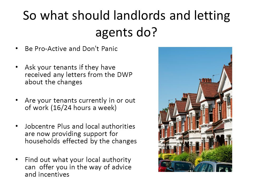 So what should landlords and letting agents do