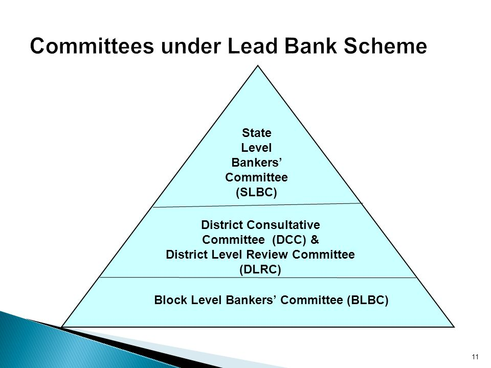 Committees under Lead Bank Scheme