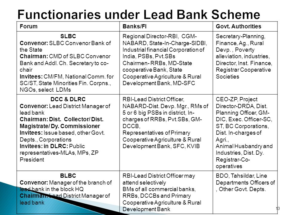 Functionaries under Lead Bank Scheme