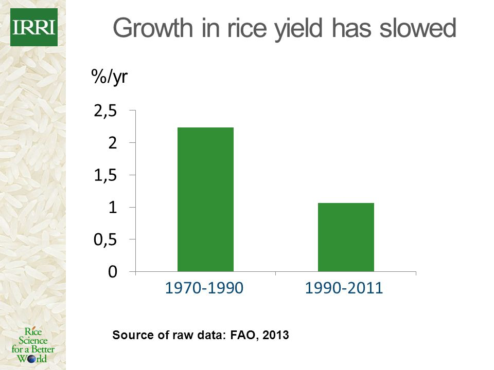 Growth in rice yield has slowed
