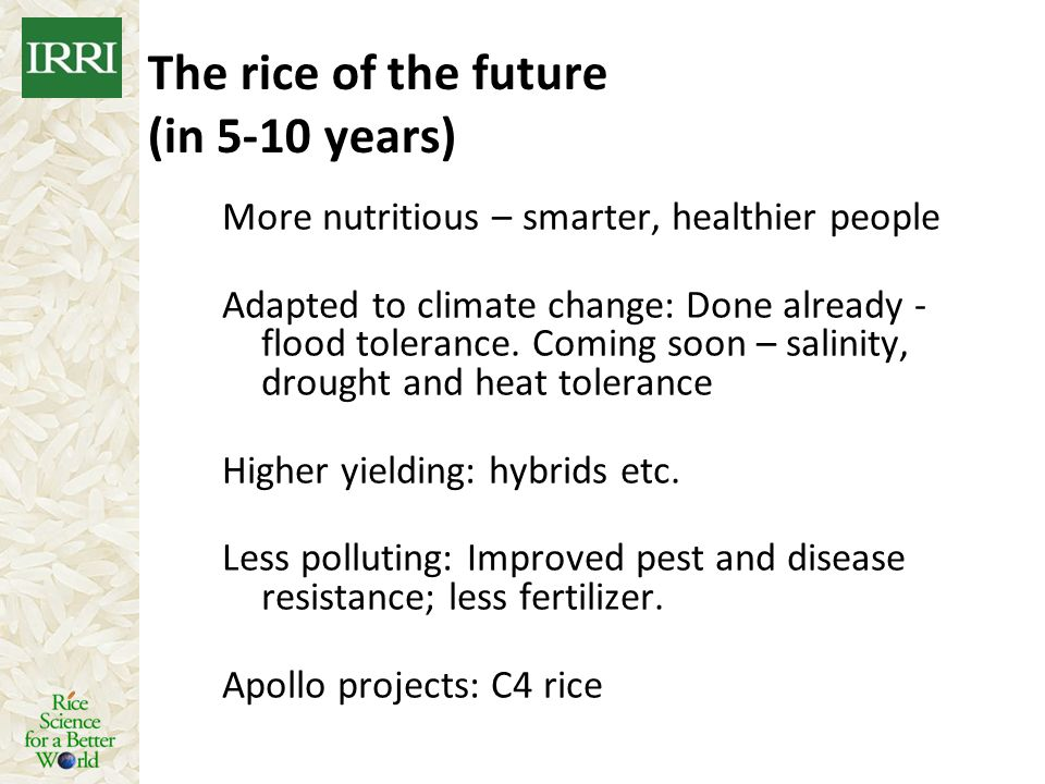 The rice of the future (in 5-10 years)