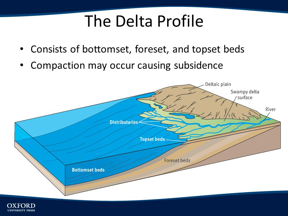 The Delta Profile Consists of bottomset, foreset, and topset beds
