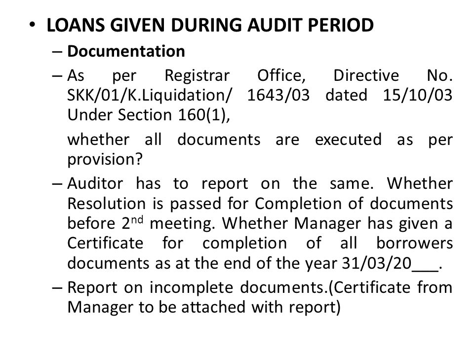 LOANS GIVEN DURING AUDIT PERIOD