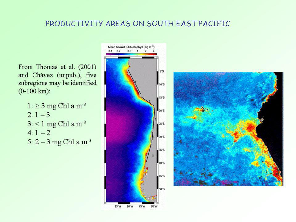 PRODUCTIVITY AREAS ON SOUTH EAST PACIFIC
