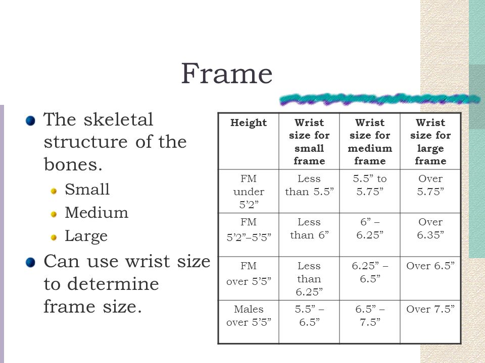 Understanding Design Body Types. - ppt video online download