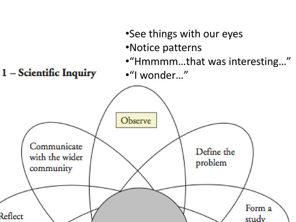 Scientific Inquiry POGIL Answer Key  Scientific Inquiry
