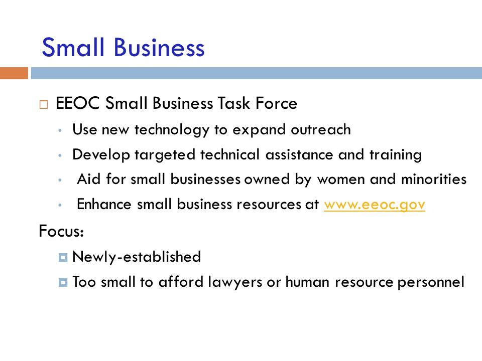 Small Business EEOC Small Business Task Force Focus: