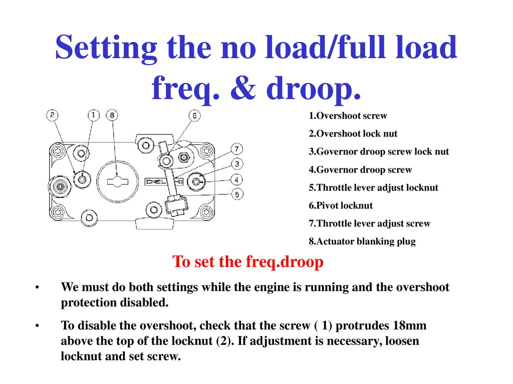 Delphi Fuel pump  Overshoot protection screw  No load