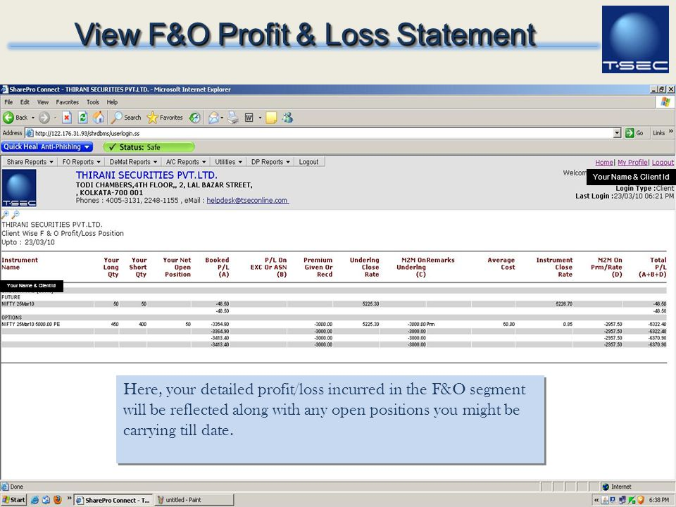 View F&O Profit & Loss Statement