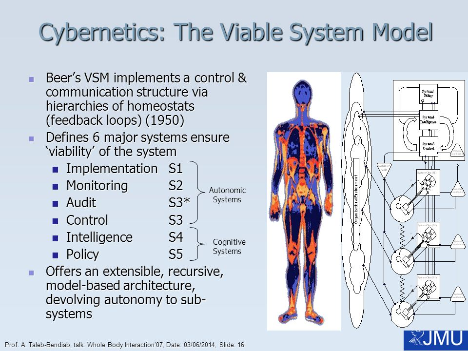Cybernetics: The Viable System Model