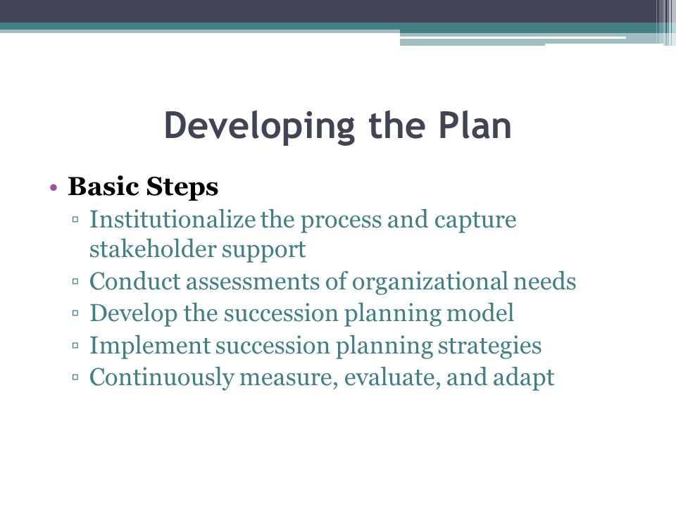 Developing the Plan Basic Steps