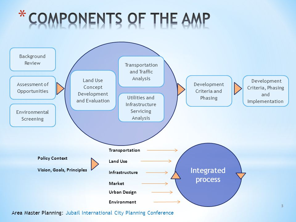 COMPONENTS OF THE AMP Integrated process