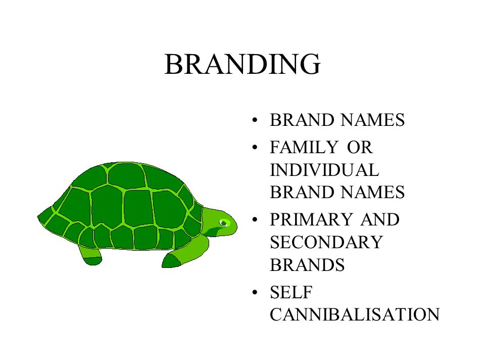 BRANDING BRAND NAMES FAMILY OR INDIVIDUAL BRAND NAMES