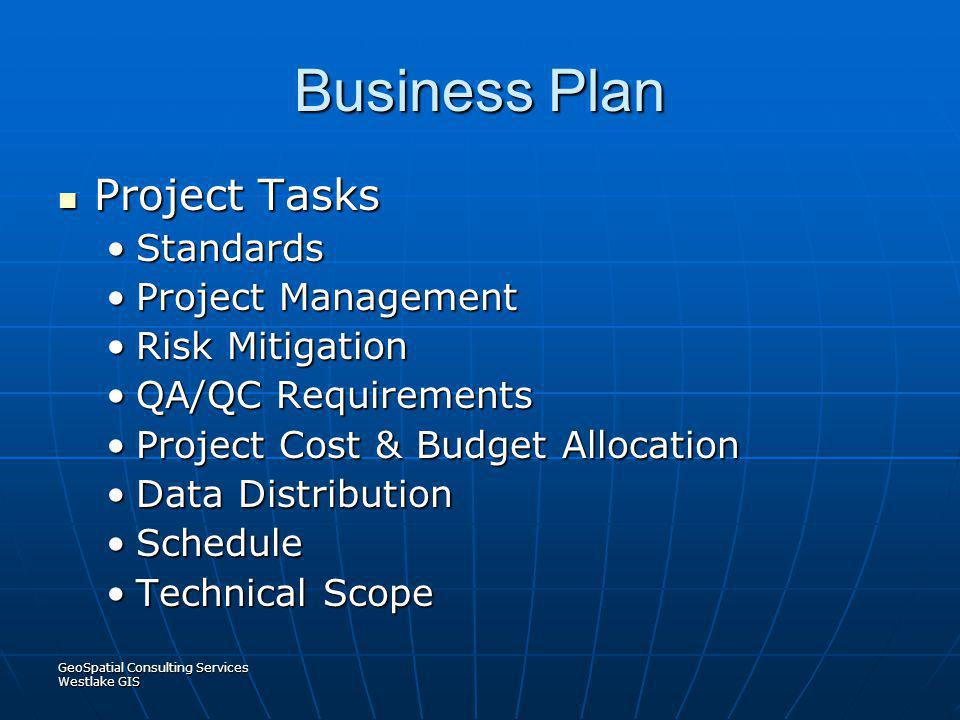 Business Plan Project Tasks Standards Project Management