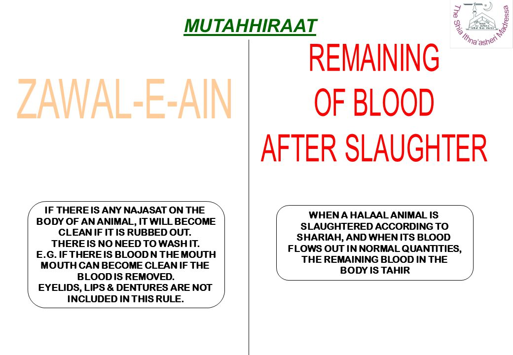 REMAINING OF BLOOD AFTER SLAUGHTER ZAWAL-E-AIN MUTAHHIRAAT