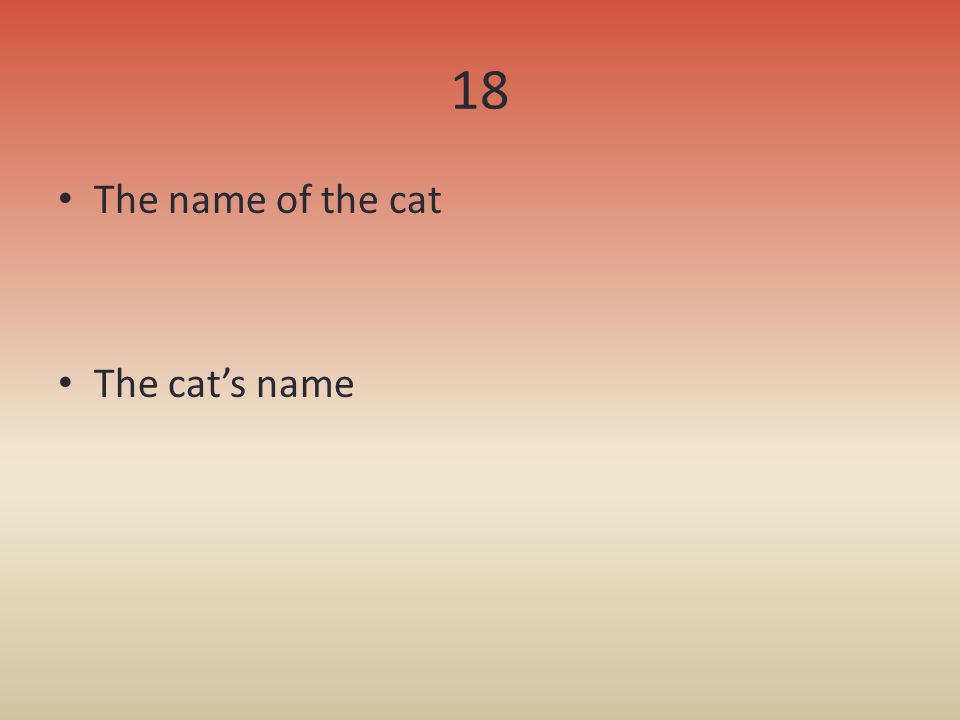 18 The name of the cat The cat's name