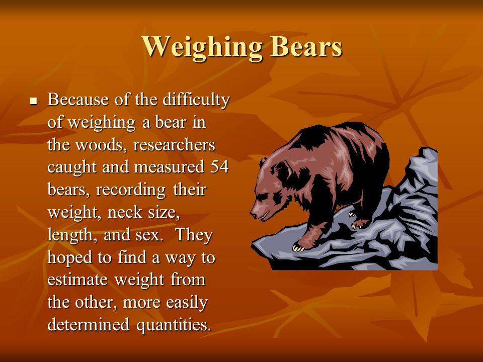 Weighing Bears