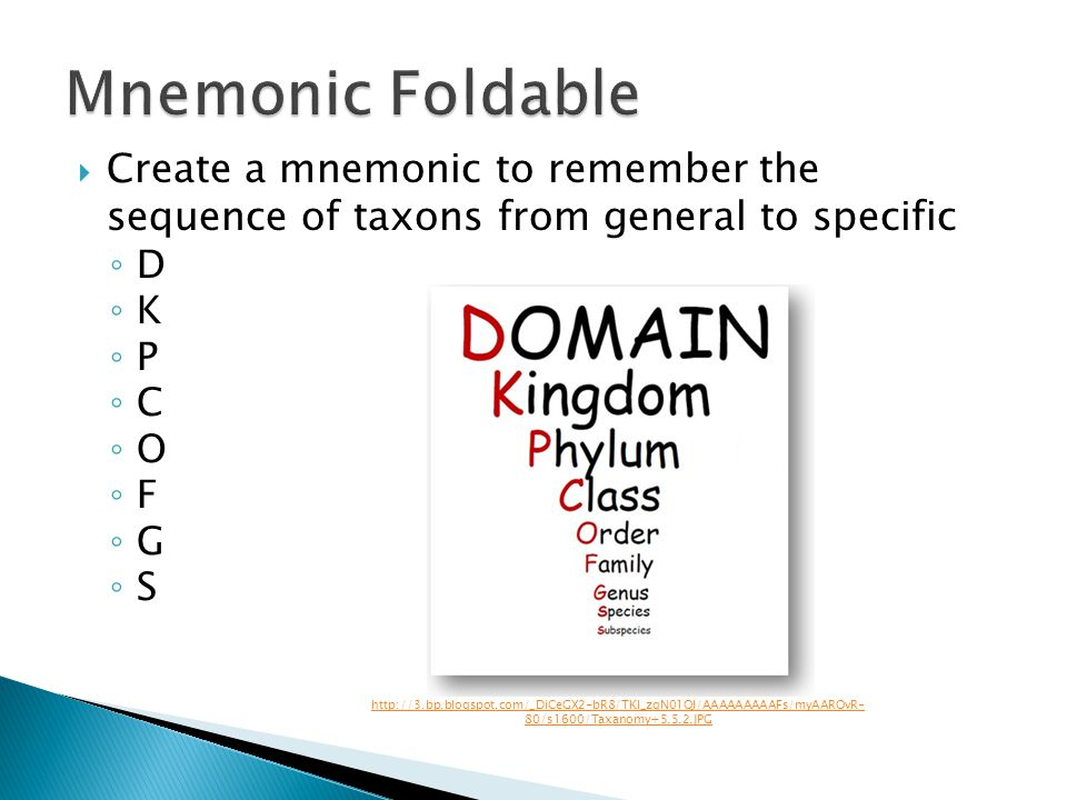Mnemonic Foldable Create a mnemonic to remember the sequence of taxons from general to specific. D.