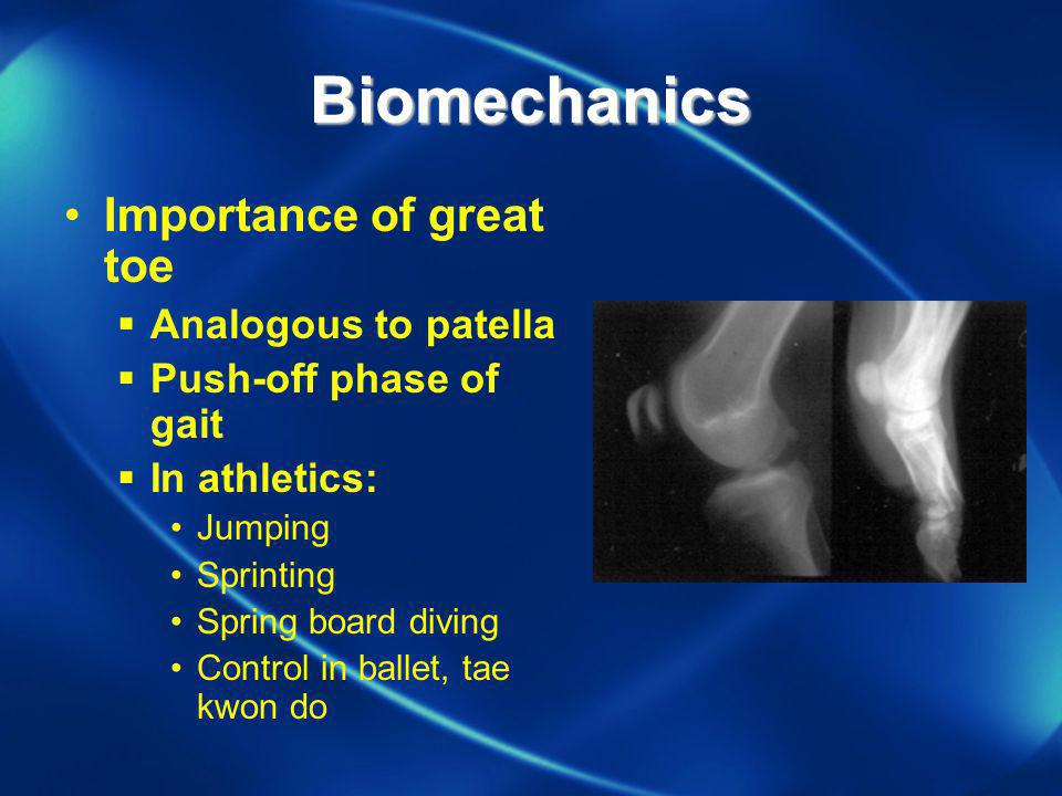 Biomechanics Importance of great toe Analogous to patella