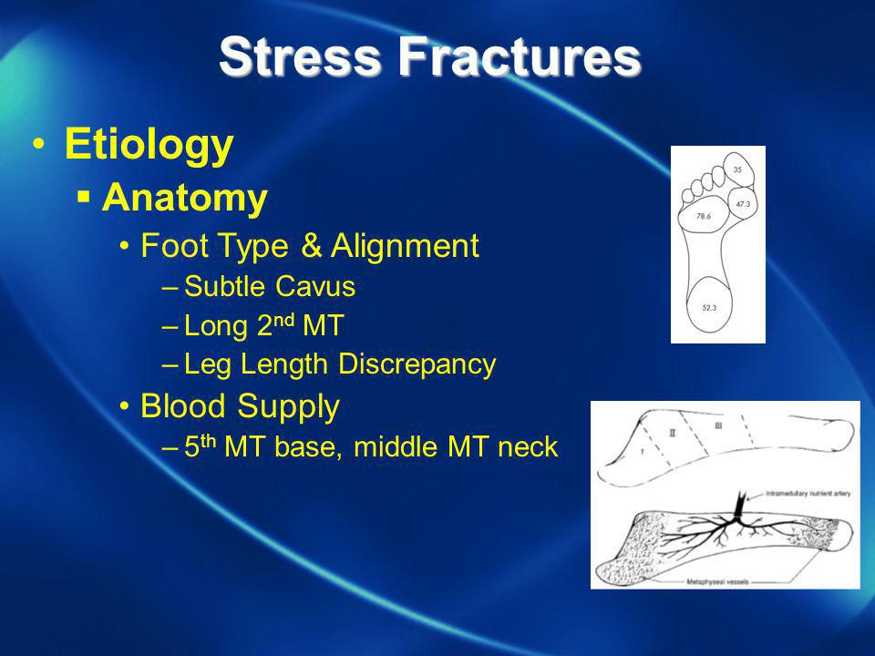 Stress Fractures Etiology Anatomy Foot Type & Alignment Blood Supply