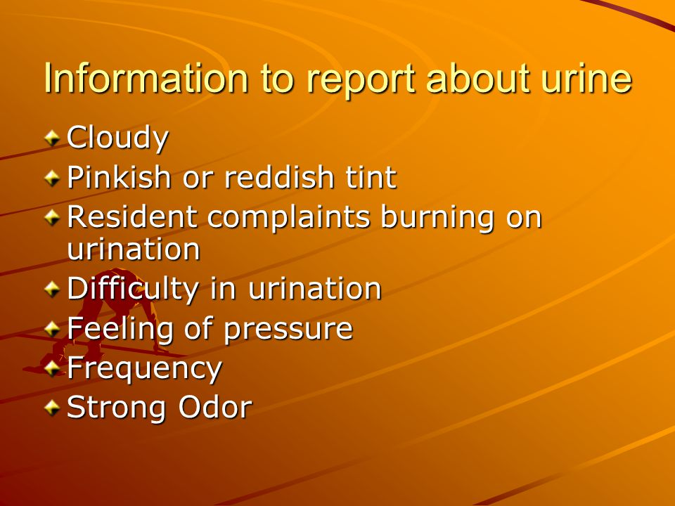 Information to report about urine