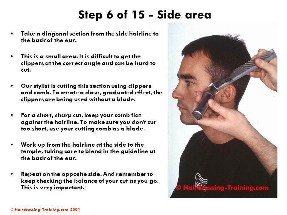 Step 6 of 15 - Side area Take a diagonal section from the side hairline to the back of the ear.