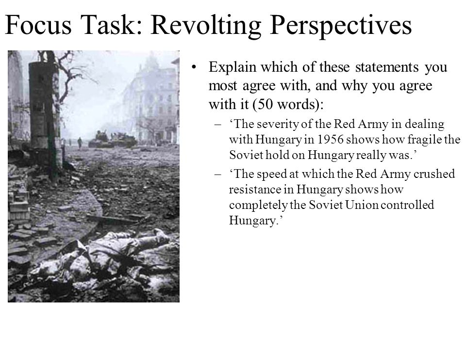Focus Task: Revolting Perspectives